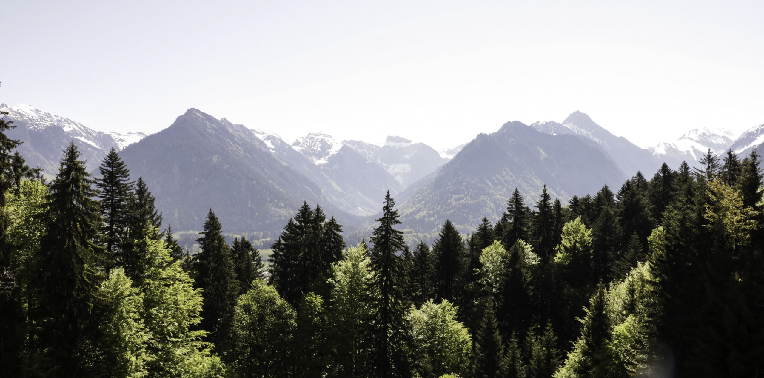 You are currently viewing Söllereck und Freibergsee
